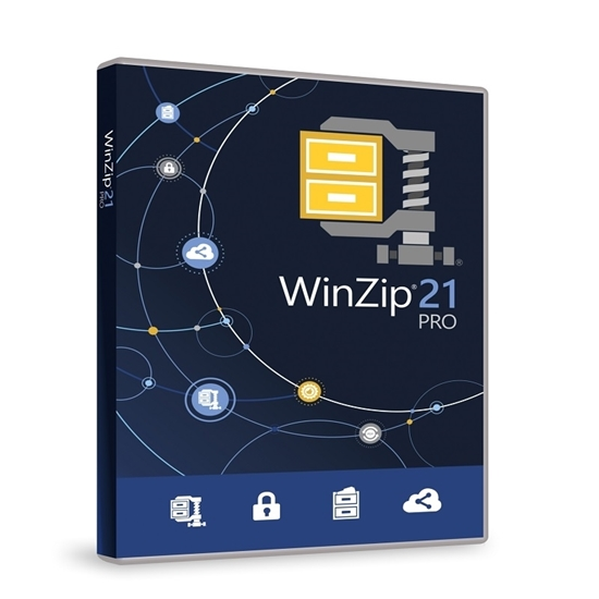 Buy WinZip Pro 21 1 PC Life Time License India